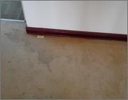 地毯清洗前寶倍潔