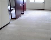 地毯清洗後